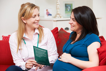 Midwife Discussing Literature With Pregnant Woman During Home Vi