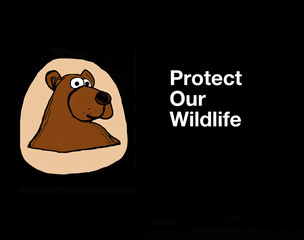 Poster of a brown bear with the words, 'Protect our wildlife'.