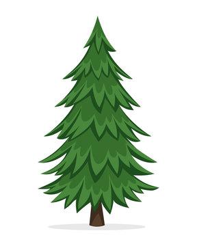 Cartoon Pine Tree