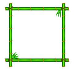 Green bamboo frame