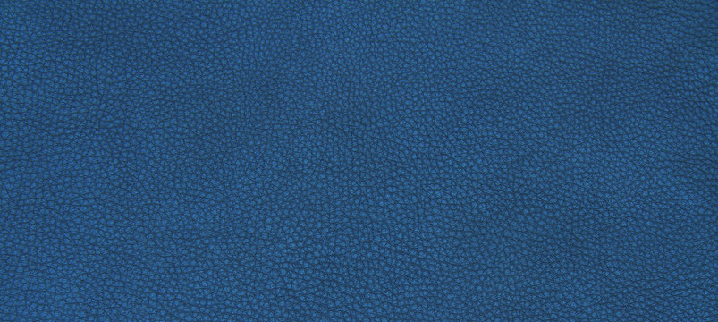 Leather blue texture