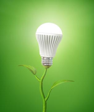 Concept of green energy. The LED light bulb illuminated on stem