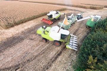 Wall Mural - Luftbild zweier Maishäckslers bei der Ernte