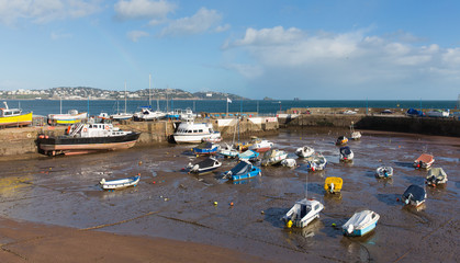 Wall Mural - Devon harbour Paignton England view to  Torquay with boats