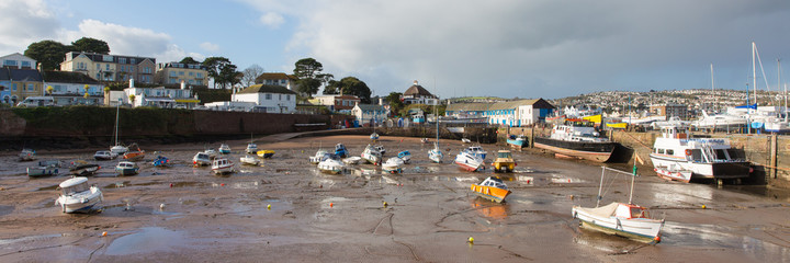 Wall Mural - Paignton harbour Devon England near Torquay panorama with boats