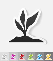 realistic design element. root-crop