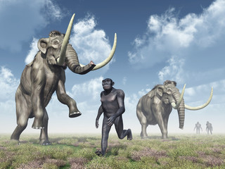 Homo Habilis and Mammoths
