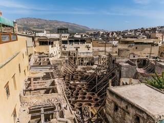 the famous tannery in fes