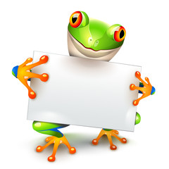 Little tree frog message