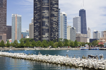 Wall Mural - Chicago from a boat