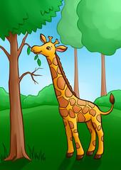 Little Cute Giraffe in the forest.