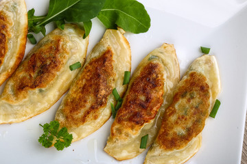 Japan traditional cuisine - Gyoza