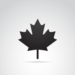 Maple leaf vector art.