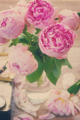 pink peonies, retro toned