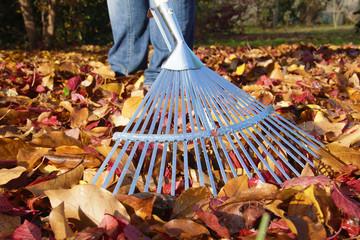 Herbstblätter zusammen rechen