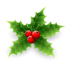 Christmas Holly Berry.