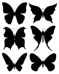 Isolated vector collection of black butterflies silhouettes with different shapes - Eps 10 vector and illustration