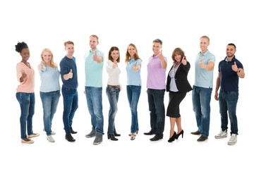 Fototapeta Portrait Of Creative Business People Standing Together