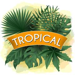 vector tropical banner