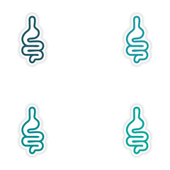 Set of paper stickers on white background human intestine
