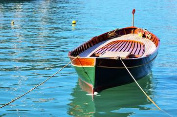 goiter in portofino, Italy