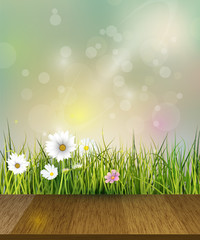 Vector illustration Green grass and echinacea ( purple coneflower) flower, white daisy and wildflower with reflection on water. Soft green color with bokeh background. Spring flower background