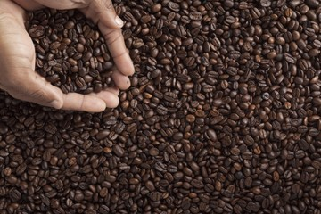 human hand with coffee beans