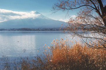 Mount Fuji view from around the Kawaguchi lake in Autumn with re