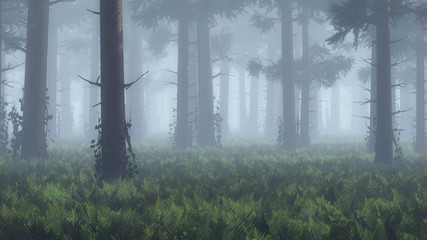 Trunks in foggy pine forest.