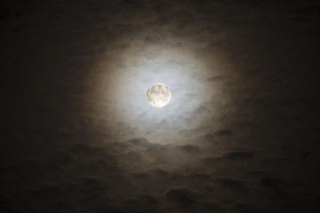 Bright Moon Rising