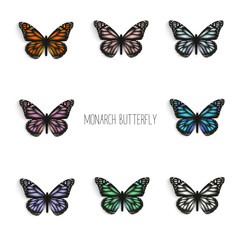 Set of realistic monarch butterflies in different colors.