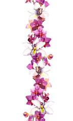 Floral seamless strip border with exotic flowers orchid. Watercolor