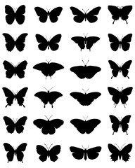 Black silhouettes of butterflies on a white background, vector