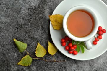 bio herbal natural tea
