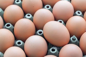 Eggs with plastic crates