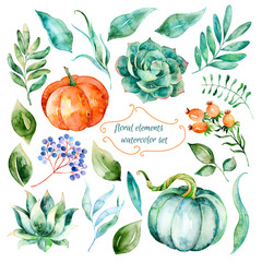 Set of high quality hand painted watercolor elements for your design.Watercolor pumpkins,leaves,berries,succulents,branch.Perfect for your project,wedding invitation,greeting card,photos,blogs,wreaths