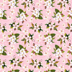 Blooming flowers (blossom) on decorative pink background with indian ornament. Floral repeating feminine pattern.