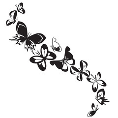 Set of butterflies isolated on white design background