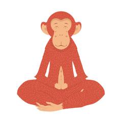 picture fiery monkey