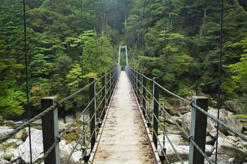 Rainforest bridge in Yakusugi Land on on Yakushima Island