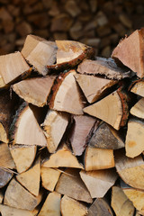 Piles of chopped firewood