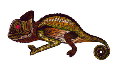Chameleon.Profile Lizard. Hand drawn.