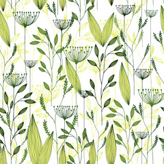 Vector grass seamless pattern. Illustration with herbs, botanical art