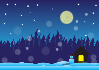 christmast night in snow field