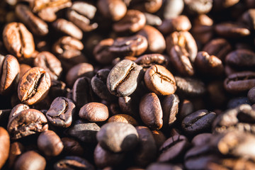 closeup coffee beans with sunlight