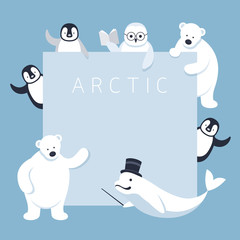Arctic Animals Characters Show Presentation, Frame, Winter, Nature Travel and Wildlife, Teaching, Guiding