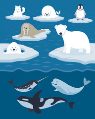 Fototapeten Pole Arctic Animals Character and Background, Winter, Nature Travel and Wildlife