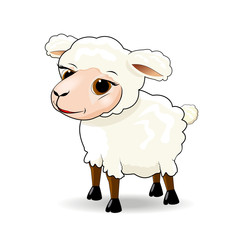 Sheep. Cartoon sheep on white background.
