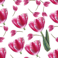 tulip pattern/ an oil pastel graphic design