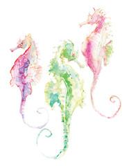Cavalos-marinhos, autoria de Meire de Oliveira